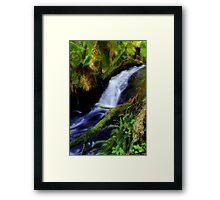 """Anne's Cascades"" Framed Print"