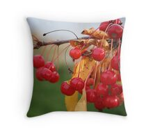 Little red shinies Throw Pillow