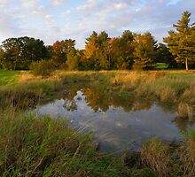 Wadlin Road Pond in Dayton, Maine by MaryinMaine