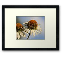 Prickly Twins Framed Print