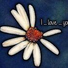 I love you-daisy v02 _ card by 1001cards