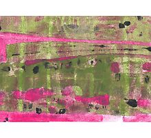Orchards Photographic Print