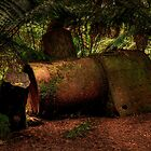 Old Steam Boiler by John  Kowalski
