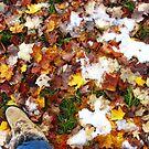 Fall At Last II by kmdphotog
