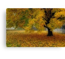 Autumn In Michigan Canvas Print