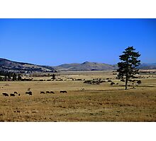 Washoe Valley Photographic Print
