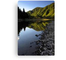 Waioeka gorge Canvas Print