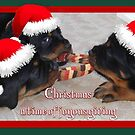 Christmas Rottweilers: A Time Of Joyous Giving  by taiche