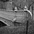 central park bridge by apam
