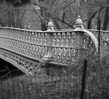 central park bridge by apam