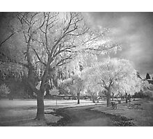 Rainy Days in Summerland Photographic Print