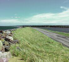 Big Island Causeway I by Stephanie Rachel Seely