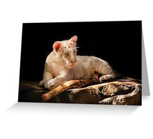 Leopard -  A baby snow Leopard Greeting Card