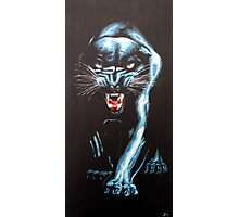 panther Photographic Print
