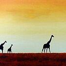 giraffes by dave reynolds