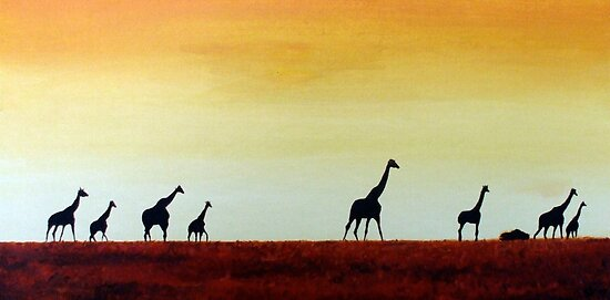 giraffes by dave reynolds