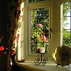 Morning sunshine by katymckay