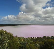 Pink Lake, Esperance, Western Australia by Adrian Paul