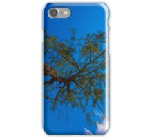 The tree under direct sunlight and blue sky iPhone Case/Skin