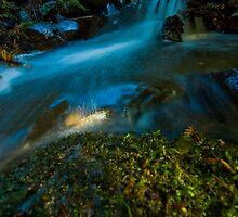 River Rush by Craig Harris