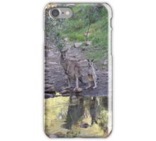 Reflections! Early morning at water hole. iPhone Case/Skin