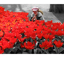 My Little Red Flower - Girl looks at  red tulips Photographic Print