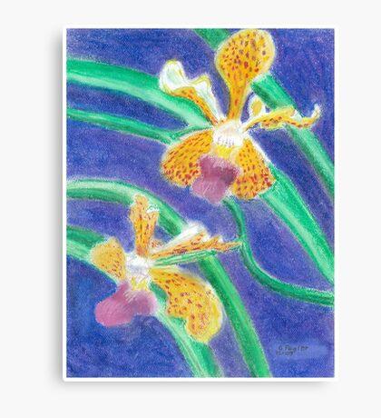 Orchid - Oil Pastel Canvas Print