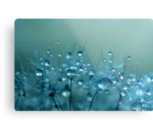 Blue Shower Metal Print