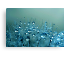 Blue Shower Canvas Print