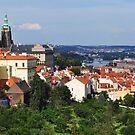 Prague City Sunny Vista by April Anderson