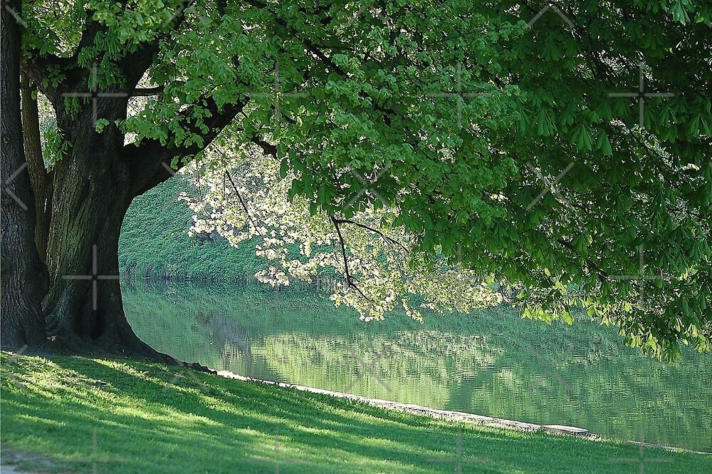Dream place by loiteke