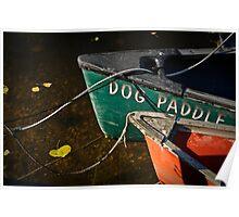 Dog Paddle Poster