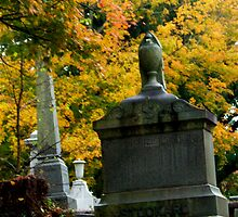 Fall in a Southern Cemetery  by beresfordphotos