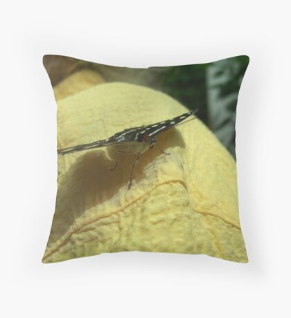 Butterfly Pavillion, Denver, Colo. My Friend Gails Friend Throw Pillow
