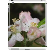 Pink Spring Apple Blossoms iPad Case/Skin