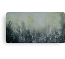 Everchanging Series Canvas Print