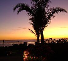 California Coast by angelsofia