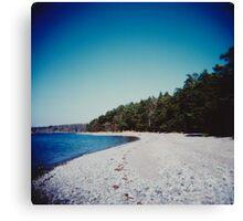 Swedish beach Canvas Print