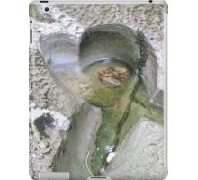 Nature's love heart Yorkshire UK iPad Case/Skin
