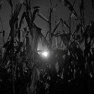 corn maze by Bruce  Dickson