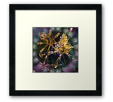 Northern Home of the Princess Framed Print