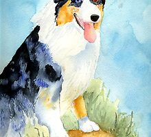 Australian Shepherd Dog Portrait by Oldetimemercan