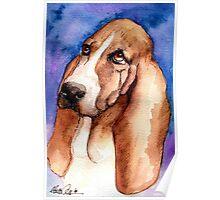 Basset Hound Dog Portrait Poster