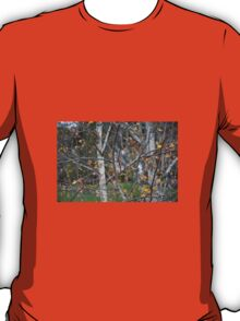 THE END OF AUTUMN T-Shirt