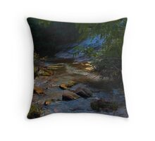 Indian Creek Throw Pillow