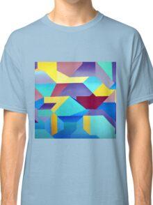 Seagull's Hunt 1.00 Classic T-Shirt