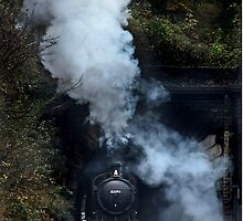 Steaming by Phillip Dove