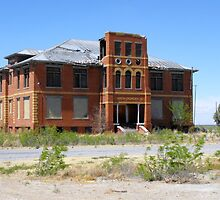 Abandoned School at Toyah, Texas by Susan Russell