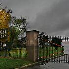 Burr Oak Cemetery - A Real Horror Story by Adam Bykowski