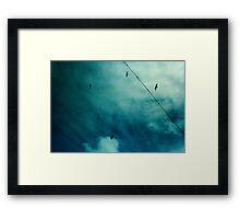 four little birds Framed Print